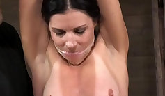 RealityKings Assful, India Summer Hot Ambition, Bondage Claire Christy, and Krystal Lynanne