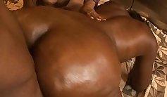 Big booty double penetration Spring Break