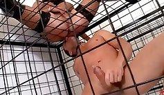 Busty mistress lets slave doggy-style stall